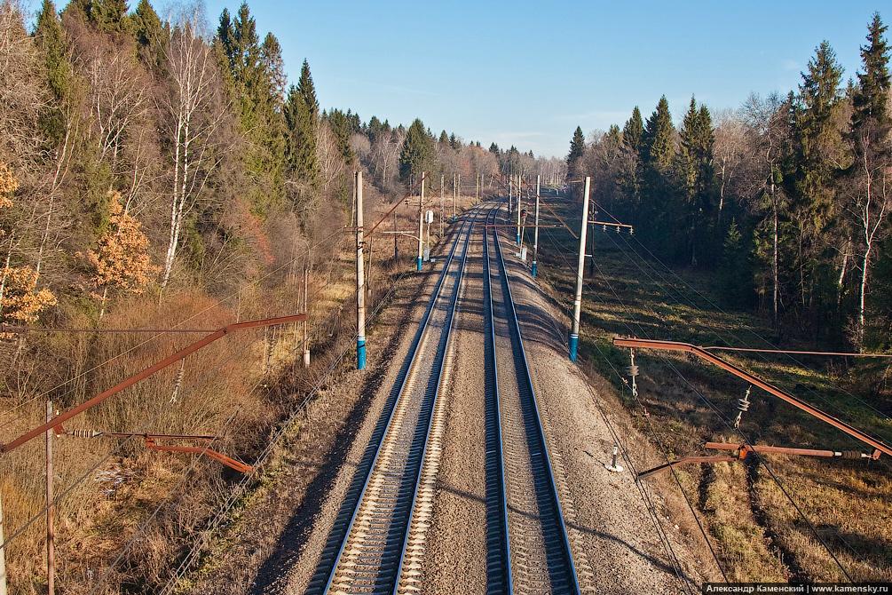 Экологичное Ярославское направление